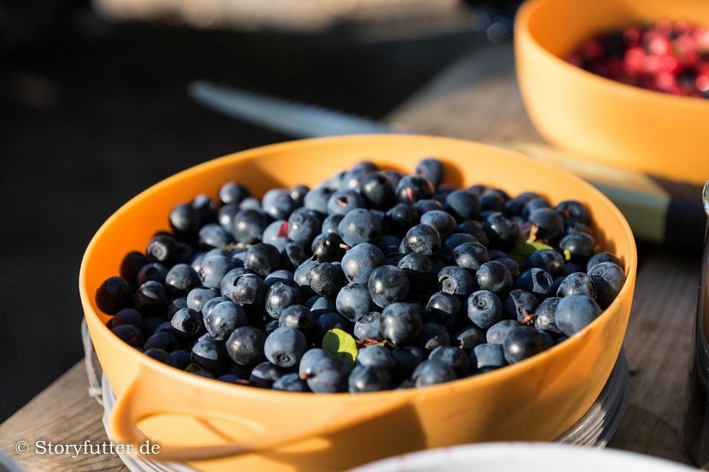 Kanutour Schweden: Schwedens Beeren