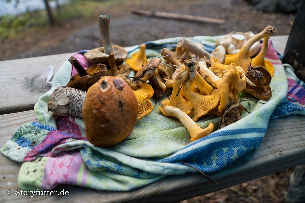 Kanutour Schweden: Zum Festmahl Pilze