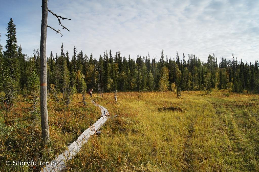 Lappland: Pyhä-Luosto-Nationalpark