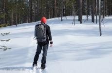 Lappland: Schneeschuhwandern