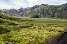 Islands Laugavegur: Ein Blick in die Ebene.