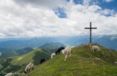 Das Maltatal in Kärnten: Latschur